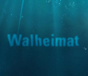 Whale-Translator